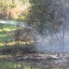 Brush fire on Chip Mizell Road